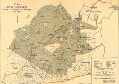 1934, Plan Lasu Wolskiego